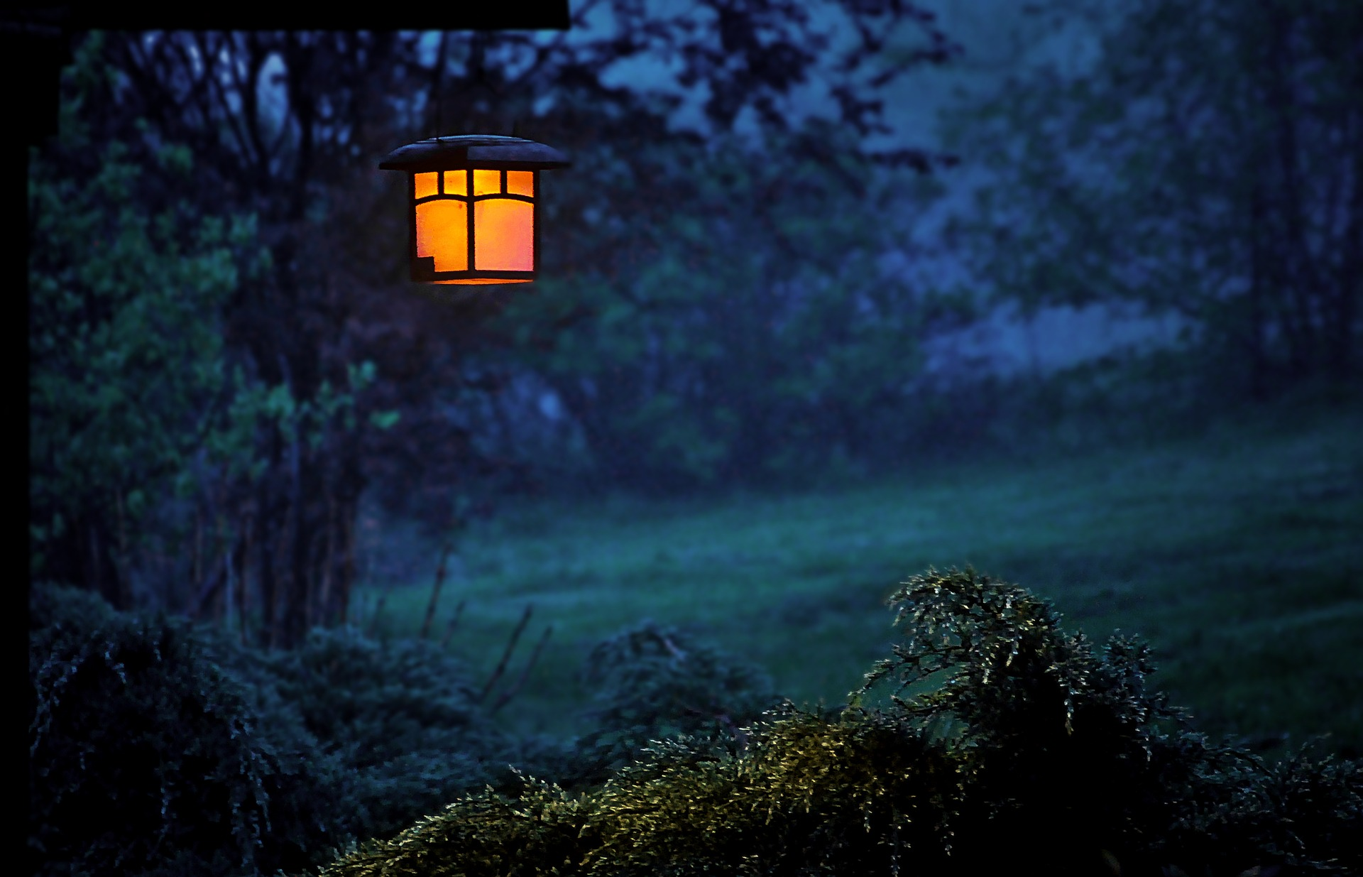 Landscape Lighting: Let There Be Light