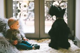 Window Treatment for Nursery – Dos and Don'ts