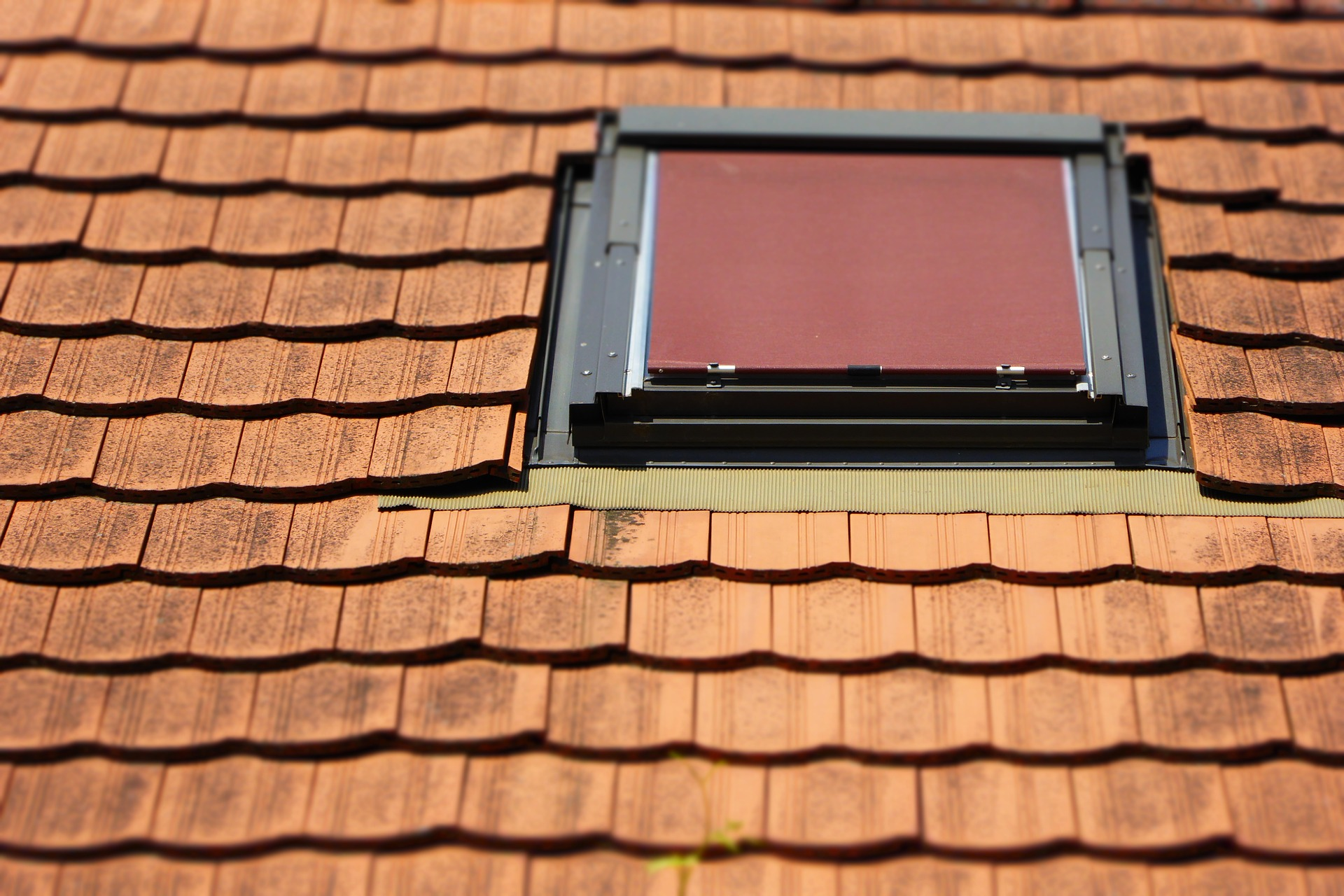 roof-